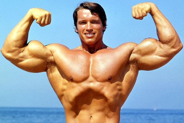 アーノルド・シュワルツェネッガーの筋肉のここがスゴい!
