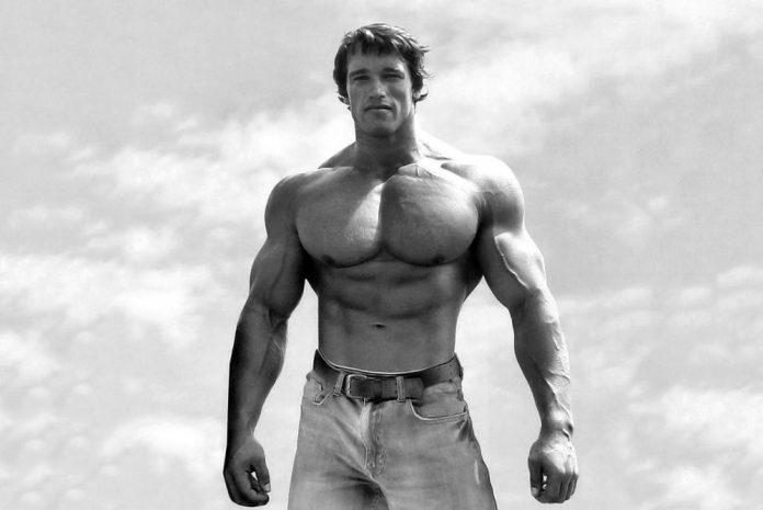 アーノルド・シュワルツェネッガーの身長・体重