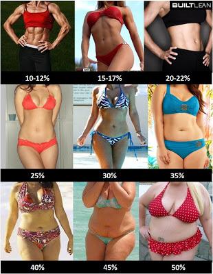体脂肪率・女性