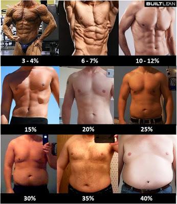 体脂肪率・男性