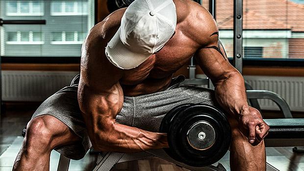 【コンセントレーションカール】上腕二頭筋のピークを作るトレーニングを筋トレのプロが徹底解説【動画あり】