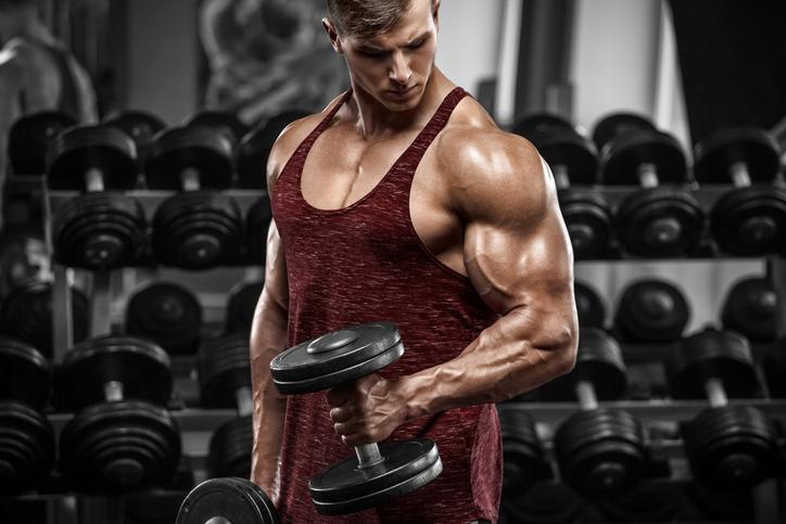 【ハンマーカール】上腕筋を鍛えられるトレーニングを筋トレのプロが徹底解説【動画あり】
